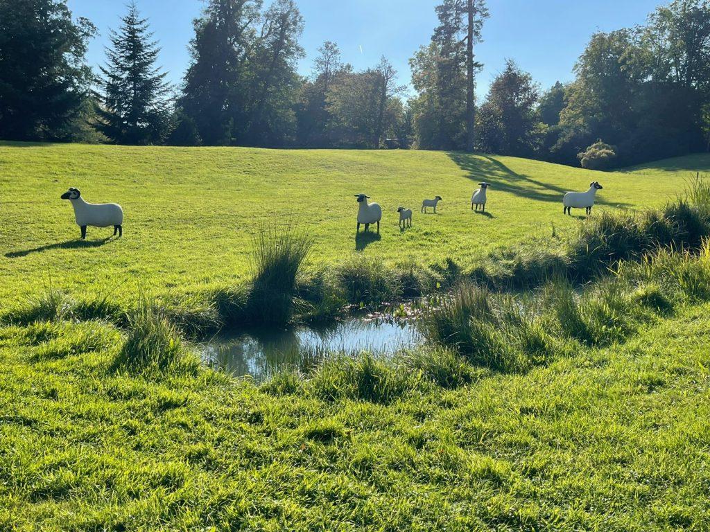 ovelhas escultura trianon